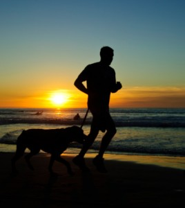 running-with-your-dog-2