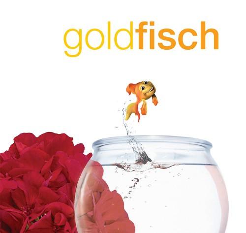 goldfisch_2_GeraCover-1