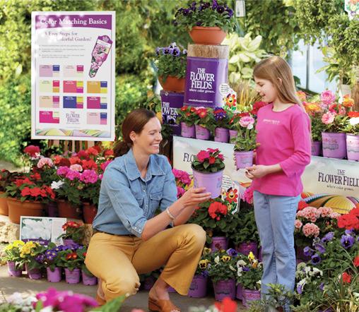 tca-flowerfields-brand-1